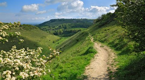 Devil's Dyke, Sussex